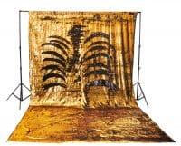 #5 Gold and Black Shimmer backdrop